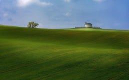 Привлекательный ландшафт в зеленых солнечных полях стоковое фото