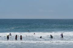 Привлеченный огромными толпами на пляже Zuma в Malibu, Калифорния, на День памяти погибших в войнах, малый стручок дельфинов полу стоковое фото rf