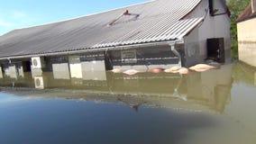 Привод через затопленные улицы со шлюпкой Затопленные поля, деревни, фермы и дома Отава опустошительных потока и земель реки видеоматериал
