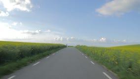 Привод POV идилличный вдоль сельской местности Поля фермы, голубое небо с облаками видеоматериал