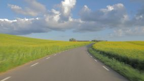 Привод POV идилличный вдоль сельской местности Поля фермы, голубое небо с облаками акции видеоматериалы