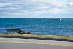 Привод Ньюпорт океана Стоковые Фото