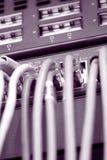 привязывает интернет Стоковые Изображения RF