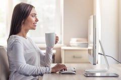 Привлекательная дама дела в офисе Стоковое Изображение