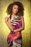Привлекательная женщина брюнет представляя в студии. стоковое фото rf