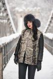 Привлекательная женщина с черной крышкой меха и серым жилетом наслаждаясь зимой Прифронтовой взгляд модный представлять девушки б Стоковое фото RF