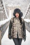 Привлекательная женщина с черной крышкой меха и серым жилетом наслаждаясь зимой Прифронтовой взгляд модный представлять девушки б Стоковая Фотография RF