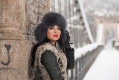 Привлекательная женщина с черной крышкой меха и серым жилетом наслаждаясь зимой Взгляд со стороны модный представлять девушки брю Стоковое Фото