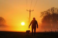 Привлекательная молодая женщина идет собака в сельской местности в заход солнца Стоковые Изображения RF