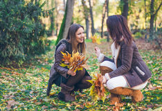 Привлекательная стильная женщина 2 собирая листья Стоковая Фотография RF