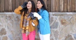 Привлекательные молодые женщины в стильной моде зимы Стоковые Фотографии RF