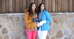 Привлекательные молодые женщины в стильной моде зимы Стоковое Изображение RF
