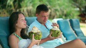 Привлекательные пары провозглашать с кокосом, экзотические каникулы акции видеоматериалы