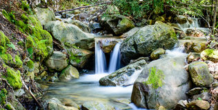 Привлекательный водопад и зеленый камень мха в лесе Стоковая Фотография