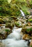 Привлекательный водопад и зеленый камень мха в лесе Стоковые Изображения RF