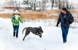 Привлекательный молодые мальчик и девушка играя с собакой Стоковые Изображения RF