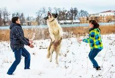 Привлекательный молодые мальчик и девушка играя с собакой Стоковая Фотография