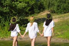 3 привлекательных женщины из воды в рубашке Стоковое Изображение RF