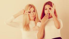 2 привлекательных женщины представляя совместно Стоковое Фото