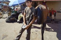Пригвождать ноги лошади Farrier Стоковые Фото