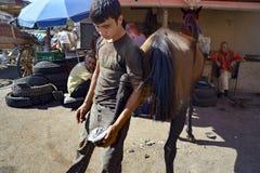 Пригвождать ноги лошади Farrier Стоковое Изображение