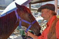 Пригвождать ноги лошади Farrier Стоковые Изображения RF