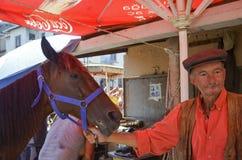Пригвождать ноги лошади Farrier Стоковое Фото