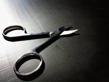 пригвоздите ножницы малым стоковое фото