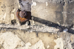 пригвоздите старое ржавое Стоковая Фотография