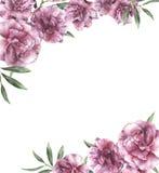 Приглашение акварели флористическое Вручите покрашенную границу с цветками олеандра при листья и ветвь изолированные на белизне Стоковые Изображения RF
