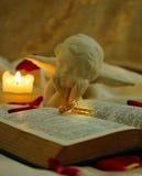 приглашение звенит венчание Стоковая Фотография RF