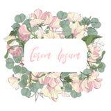 Приглашение карточки флористического дизайна вектора: флористический цветок сладостного гороха пинка сада и зеленый доллар евкали бесплатная иллюстрация
