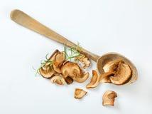 Пригорошня высушенных грибов и деревянной ложки стоковая фотография rf