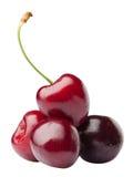 Пригорошня красной вишни Стоковые Изображения