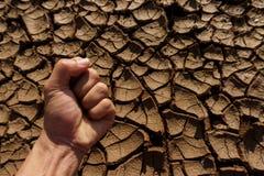 Пригорошня на почве треснутого soid , засуха стоковая фотография