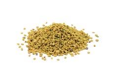 Пригорошня семян пажитника стоковая фотография