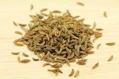 Пригорошня семян тимона стоковые фотографии rf