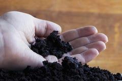 Пригорошня черной земли в руке стоковое фото rf