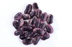 Пригорошня черно-фиолетовых фасолей почки стоковые фотографии rf