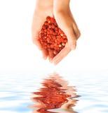 пригорошня ягод стоковое фото