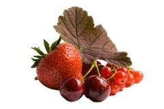 пригорошня ягод Стоковое Изображение