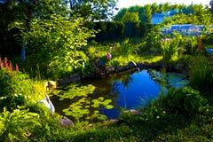 Пригородный пруд Стоковое Изображение RF