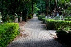 Пригородный тротуар Стоковые Фото