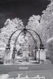 Пригород сада Hampstead, Лондон Великобритания - ультракрасный черно-белый ландшафт Стоковая Фотография RF