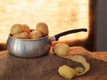 Приготовление пищи, слезая картошки подсвеченные окном, деревенский натюрморт установки с кастрюлькой, джутом hessian aka стоковое фото