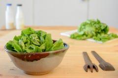 Приготовление уроков салата в кухне стоковое изображение