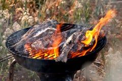 Приготовление на гриле рыб леща моря на BBQ Стоковое Изображение