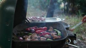Приготовление на гриле цыпленка на барбекю для пикника в саде сток-видео