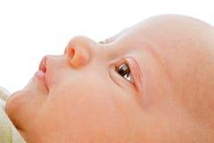 придавать правильную формуый конец младенца Стоковое Фото