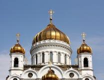 придает куполообразную форму: золотистый правоверный висок Стоковые Фотографии RF